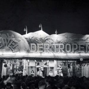Herbert Wendling, München 1930 - 1960, Welt der Tropen
